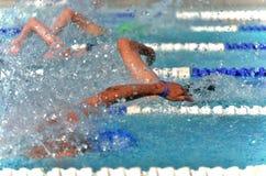 一次势均力敌的比赛的自由式游泳者在游泳比赛 免版税库存照片