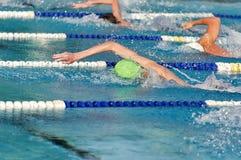 一次势均力敌的比赛的自由式游泳者 免版税库存照片