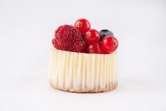 一点乳酪蛋糕用果子 免版税库存图片