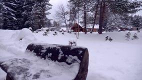一点俄国村庄在冬天森林里 股票录像