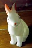一点兔子白色 免版税库存照片