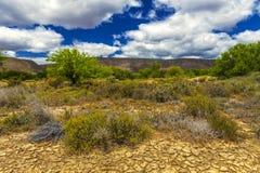 一点南部非洲的干旱台地高原,南非 库存照片
