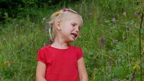 一点哭泣在高草地早熟禾的四岁的女孩 股票视频