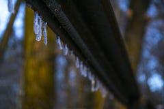 一点在铁角落的冰柱 图库摄影