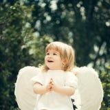 一点天使拍他的手 图库摄影