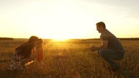 一点女儿从爸爸去到妈妈在阳光下 有走在夏天领域的孩子的愉快的年轻家庭 健康母亲 股票视频