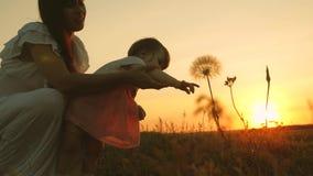 一点女儿和母亲戏剧在日落的公园 婴孩伸他的手对蒲公英 幸福家庭在旅行 影视素材