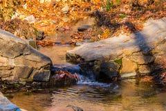 一点小河在斯通山公园,美国 库存图片