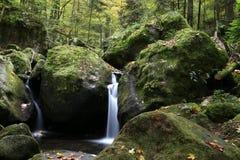 一点小河在黑森林中间  免版税库存照片