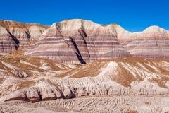 一点彩绘沙漠冬天风景 免版税库存照片