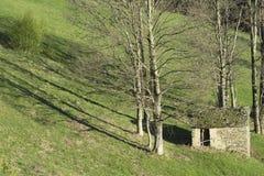 一点房子在森林里 免版税库存照片