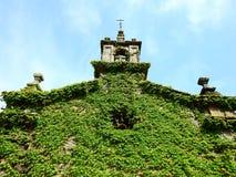 一点有绿色常春藤的教会在它的墙壁上 免版税库存照片