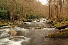 一点河在伟大的Smokey山国立公园 库存图片