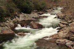 一点河在伟大的Smokey山国立公园 免版税库存照片