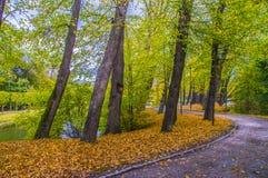 一点河在公园 免版税库存图片