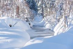 一点河在用雪盖的森林里 库存图片