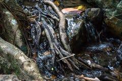 一点河在Sarika瀑布泰国Pation公园 库存图片
