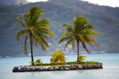 一点海岛绿洲在博拉博拉岛 免版税库存照片