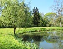 一点湖和春天树 库存照片
