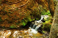 一点瀑布在国家公园 库存图片