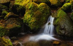 一点瀑布,华盛顿州 免版税库存照片