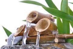 一点竹喷泉 库存照片