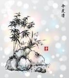 一点竹树和野生兰花在岩石 库存图片