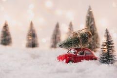 一点红色汽车玩具运载的圣诞树 库存图片