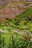 一点老房子在Cabo Verde 免版税库存图片