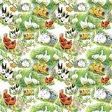 一点蓬松逗人喜爱的水彩鸭子、鸡和野兔与蛋无缝的样式在白色背景导航例证 免版税库存图片