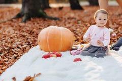 一点逗人喜爱的孩子在黄色叶子的公园用南瓜在秋天 库存图片
