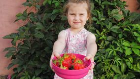 一点逗人喜爱的美女在被伸出的手上拿着草莓莓果 股票视频