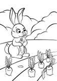 一点野兔用红萝卜 图库摄影