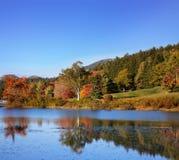 一点长的池塘 免版税库存图片