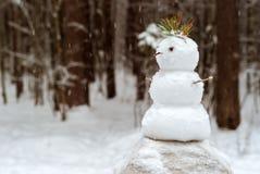 一点雪人在公园 图库摄影