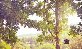 一点鸟舍在夏天 图库摄影