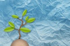一点绿色树纸削减了在被弄皱的纸的平的样式 免版税库存照片