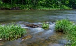 一点Beaverkill河-著名鳟鱼小河在纽约 库存照片