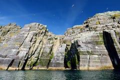 一点Skellig海岛、家许多各种各样的海鸟的和第二大gannets殖民地在世界上,凯里郡,爱尔兰 免版税库存照片