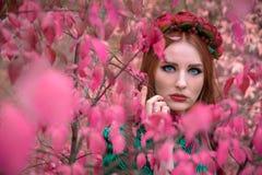 一片桃红色叶子的一个美丽和美妙的女孩与红色花圈 库存照片