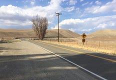 一片沙漠在内华达,加利福尼亚 免版税库存照片