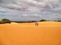 一片沙漠在委内瑞拉 免版税库存图片