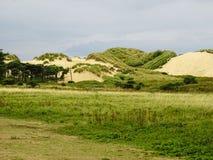 一片绿洲在英国 沙子小山在英国 库存图片