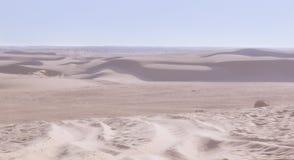 一片绿洲在撒哈拉大沙漠 库存照片