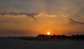 一片绿洲在撒哈拉大沙漠 免版税图库摄影