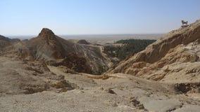 一片绿洲在撒哈拉大沙漠 免版税库存图片
