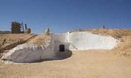 一片绿洲在撒哈拉大沙漠 库存图片