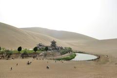一片绿洲在沙漠 库存图片