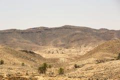 一片绿洲在阿特拉斯山脉 免版税图库摄影