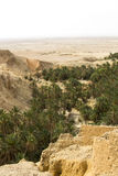 一片绿洲在阿特拉斯山脉 免版税库存照片